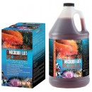 PL™ Beneficial Pond Bacteria Microbe-Lift