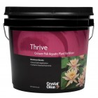 Thrive™ Aquatic Plant Fertilizer Tabs by Crystal Clear®