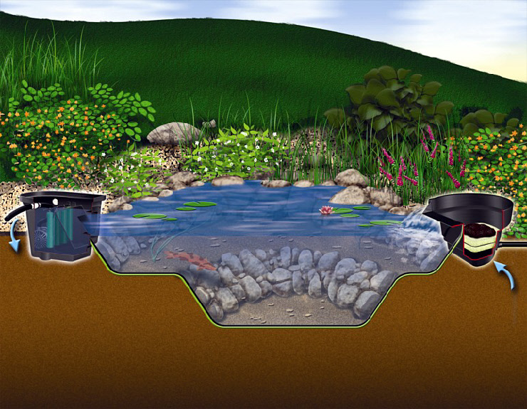 Micropond Kits From Aquascape