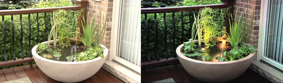 Patio Ponds & Container Water Gardens from Aquascape®