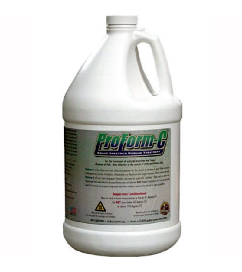 Preform c ich treatment from koi care kennel for Koi pond treatment